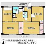 3DK(DK4.5・洋室6・洋室6・洋室4.5)(間取)